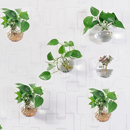 6 pcs wandbehang pflanzgef e rund glas pflanzschalen aufh ngen air pflanzschalen flower vase. Black Bedroom Furniture Sets. Home Design Ideas