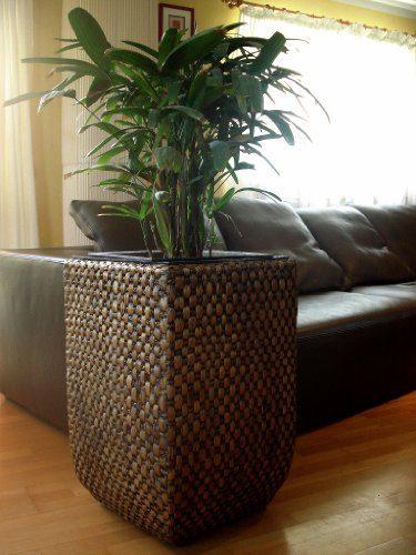 wasserhyazinthe blumenk bel bert pfe pflanzk bel. Black Bedroom Furniture Sets. Home Design Ideas