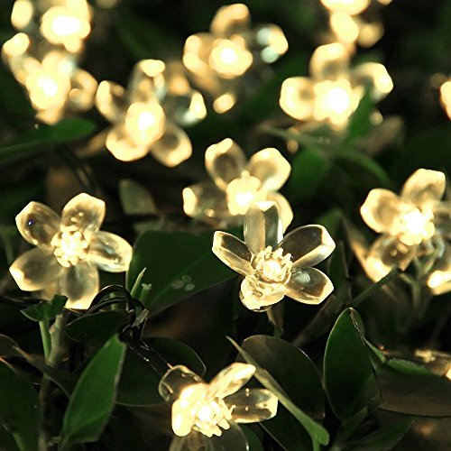 solar lichterkette innootech led solar blumen lichterkette 5 meter 50er warmwei. Black Bedroom Furniture Sets. Home Design Ideas